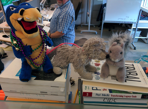 Husk makes new friends - Ally the gator, and Squirrel